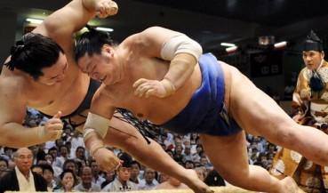 Luchadores de Sumo caen sobre el público.